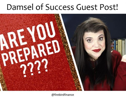 Damsel of Success Guest Post!