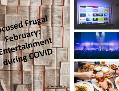 Focused Frugal February: Entertainment during COVID